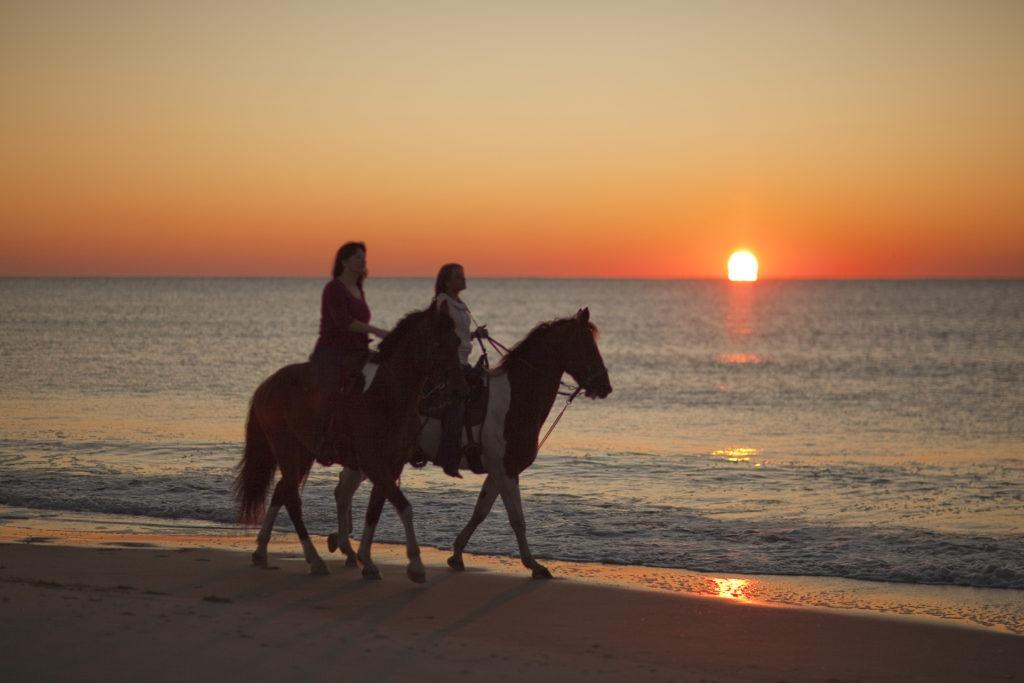 Horseback Riding North Myrtle Beach